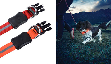 Nite Ize - Nite Dawg Collar - Orange - 46-69cm - NND2L-31-R3