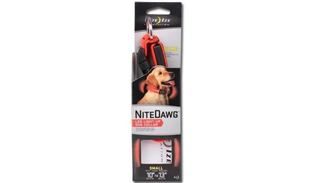 Nite Ize - Nite Dawg Collar - Orange - 25-33cm - NND2S-31-R3