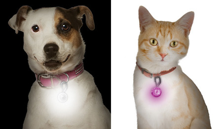 Nite Ize - PetLit LED Collar Light - Pink Jewel - PCL02-03-12JE